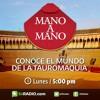 La música flamenca