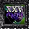 Christian ⚔️ (XXV) - Still Fly mp3