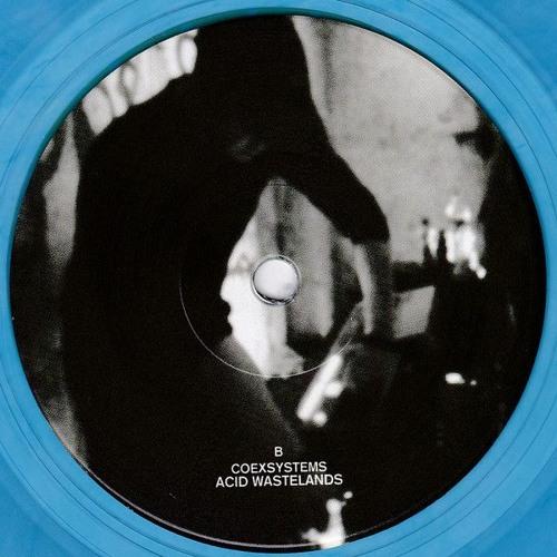 Acid Wastelands - Audio Riots 03