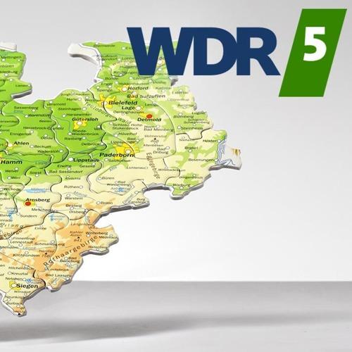 WDR5 Westblick: Critical Mass Köln am 30.07.2015
