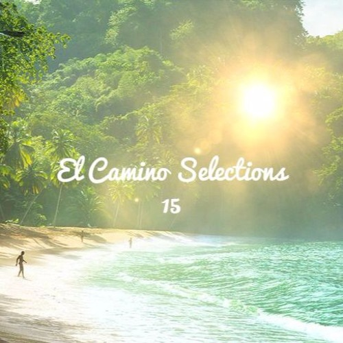 AYES COLD X EL CAMINO TRAVEL // SELECTIONS CONTINUED 15