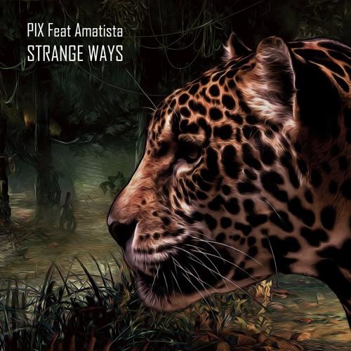 Pix, Amatista - Strange Ways (Elegant Ape Remix)