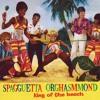 LM21 - SPAGGUETTA ORGHASMMOND - King of the beach