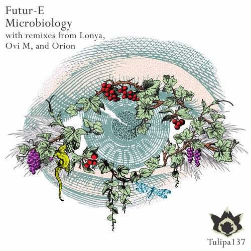 Futur-E - Telescope (Orion Deep Field Remix) [Tulipa Rec.] [OUT NOW]