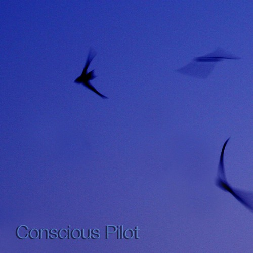 Pan Electric: 'Conscious Pilot' [Rouge Reptile ROUG004]