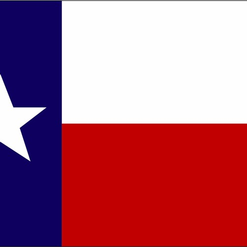 02 - Texas Companion - Gun Laws
