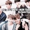 오늘 모해(WYD) - iKON Thai Ver.