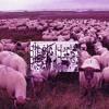 $uicideboy$ - Grey Sheep EP  1 & 2 Mix
