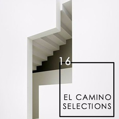 AYES COLD x EL CAMINO TRAVEL // SELECTIONS CONTINUED 16