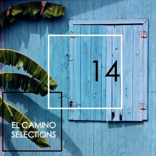 AYES COLD X EL CAMINO TRAVEL // SELECTIONS CONTINUED 14