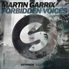 Martin Garrix - Forbidden Voices (NANO Full Remake)