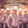 Voy A Enamorarla - Los Igualados (2016)