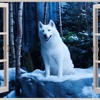 Energy Wolf: TOPIC - HOME ft. Nico Santos Remix