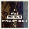 I Was Wrong (Winslow Remix) - Arizona
