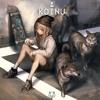 Koinu - Shibesquad (Kitsun Bootleg) [FREE DOWNLOAD]