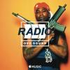 Gucci Mane ~ Back On Road Ft. Drake
