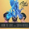Cash Cash, Sofia Reyes - How To Love (Boombox Cartel Remix) (Dessirezz Edit)