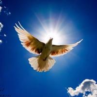 Ofiaruję Tobie Panie Mój (Lord, I Offer You...) [LIVE]