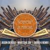 Jason Derulo - Whatcha Say   Dario K Remix