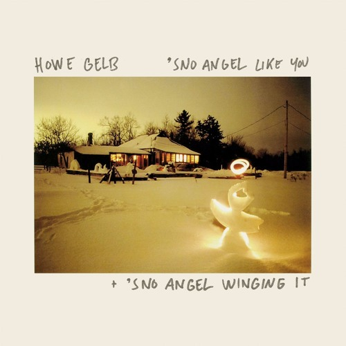Howe Gelb - But I Did Not
