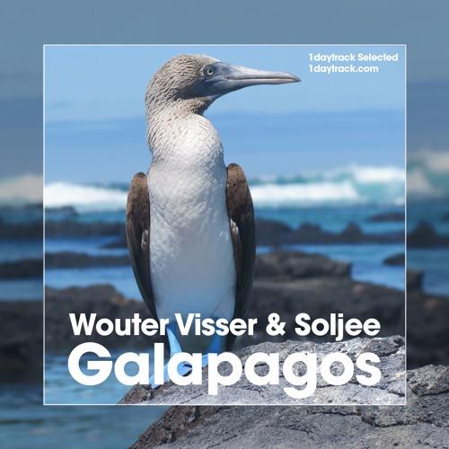 Wouter Visser & Soljee - Galapagos (Original Mix)