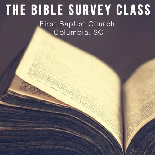 The Bible Survey Class