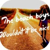 The Beach Boys - Wouldn't It Be Nice (F. Delaunay Remix)