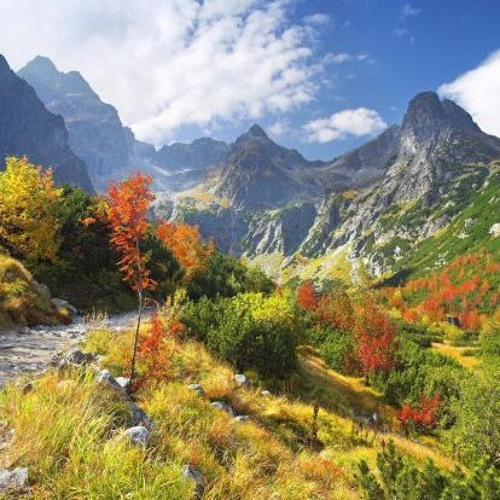 """""""Balancing Mountain Top Moments with Valley Living"""" Keynote Presentation"""