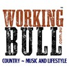 Working Bull Podcast 7