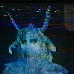PROCESS 404 - VHS