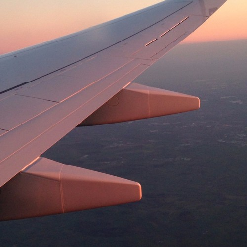 Fight or Flight: A Phobic's Story