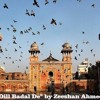 Dill Badal De|Zeeshan Ahmed