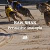 Raw Shan - Persuasive Anatopia(bassmusik040)