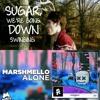 Fall Out Boy X Marshmello - Sugar We're Alone(Christian Alexander MashUp)DOWNLOAD IN DESCRIPTION