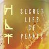 Huxleys Last Trip - Secret Life Of Plants (Demo)