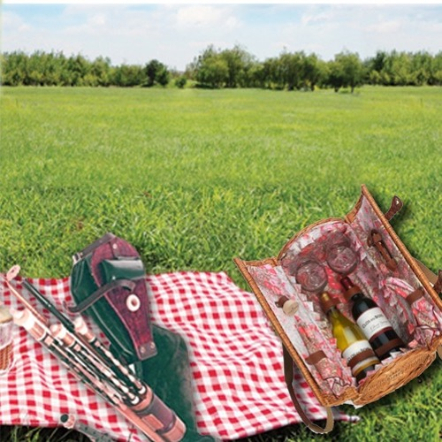 Pipers Picnic – Playalong with the Tin Whistle.