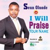 I Will Praise Your Name