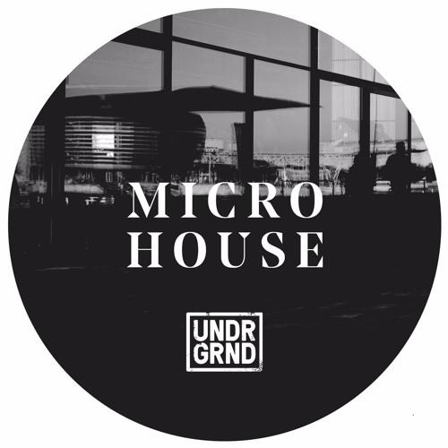 Micro House - Full Demo