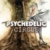 Liveset @ Psychedelic Circus 2016