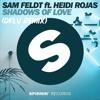Sam Feldt ft Heidi Rojas - Shadow Of Love (DFLV Remix)