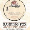 In His Name Riddim 12' - Ranking Fox / Anthony John / Yann Sax / Steppin Pablo / Dub Foundry