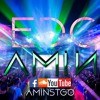 WELCOME TO EDC PR 2015 - DJ AMIN (Free Download)