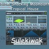 Serum Presets Vandalism Shocking Moombahton & Tropical House