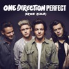 One Direction - Perfect (Erwin Remix)
