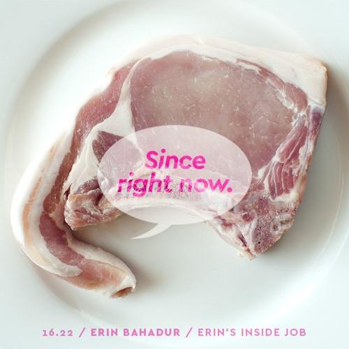 16.22: Erin Bahadur / Erin's Inside Job