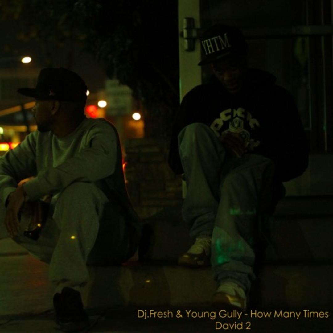 Young Gully x DJ Fresh - How Many Times (Prod. DJ Fresh) [Thizzler.com]