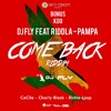 Dj Fly Feat Riddla - Pampa