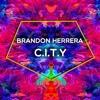 Brandon Herrera - C.I.T.Y (Original Mix)