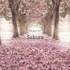 Sakura (Original Mix)
