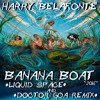 Harry Belafonte - Banana Boat (Liquid Space and  Doctor GoA Remix) UNFINISHED PREVIEW - 2016